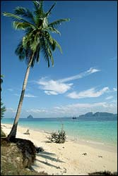Phuket has more then hotels, nightlife and long beaches, take some tours and explore. This photo is from Phi Phi Islands